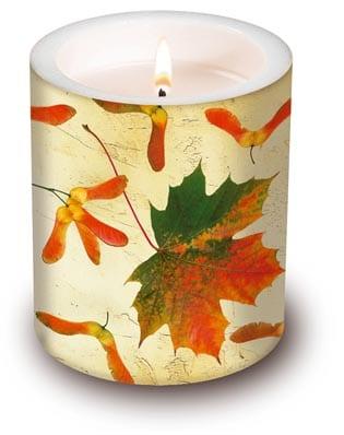 dekokerze 39 maple leaf 39 g nstig kaufen filzkordel discount. Black Bedroom Furniture Sets. Home Design Ideas