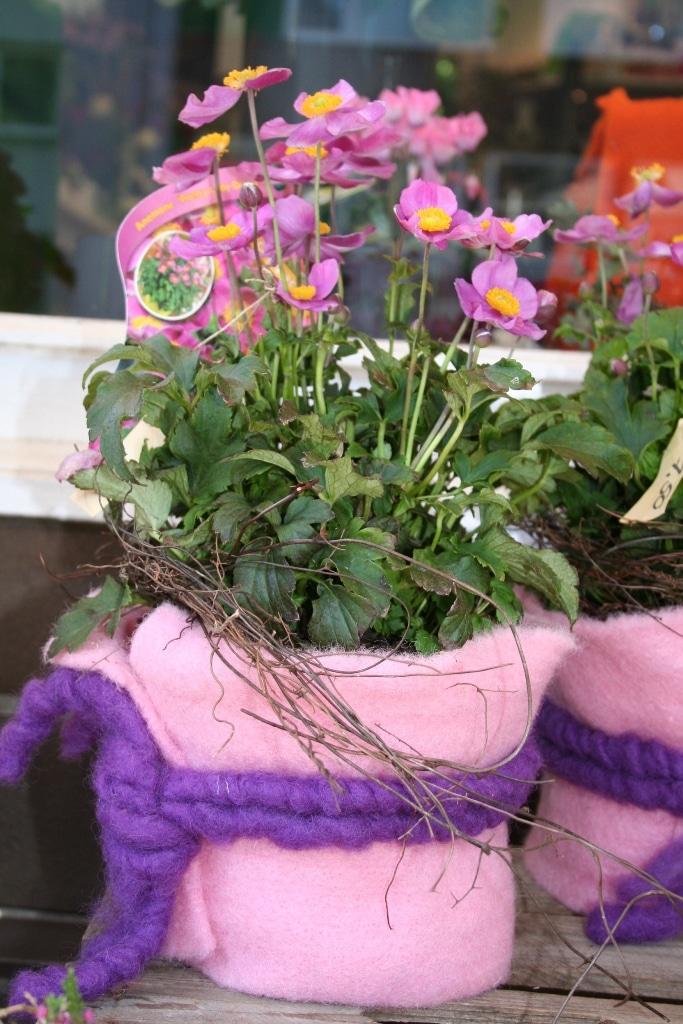 floristische deko mit wollvlies in rosa und lila. Black Bedroom Furniture Sets. Home Design Ideas