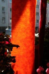 Schaufenster mit Wollvlies dekoriert