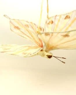 Schmetterling creme-braun, ca 22 cm lang - fruehjahr, everyday-dekoaccessoires, dekoaccessoires